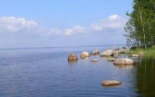 Озеро отрадное рыбалка