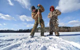 Ловля окуня зимой на блесну