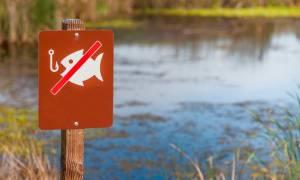 Штраф за рыбалку на острогу