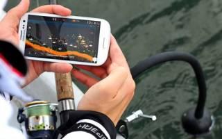 Эхолот для рыбалки зимой и летом какой лучше