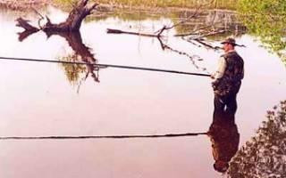 Ловля на мормышку осенью