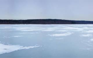 Рыбалка на торбеевском озере