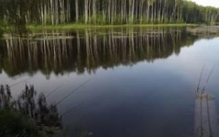 Орловский пруд рыбалка