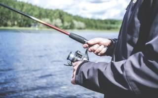 Волго дон рыбалка