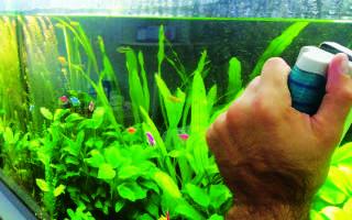 Как мыть аквариум с рыбками
