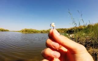 Как запарить перловку для рыбалки на карася