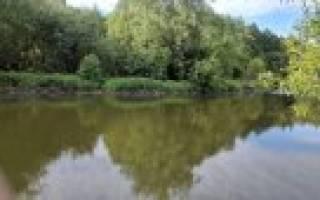 Рыбалка на реке лопасня