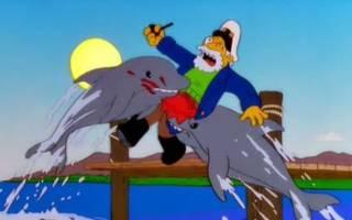Чем опасны дельфины