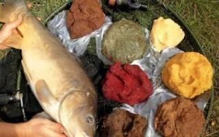 Прикормка для речной рыбы