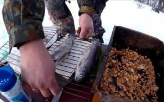 Холодного копчения рыба