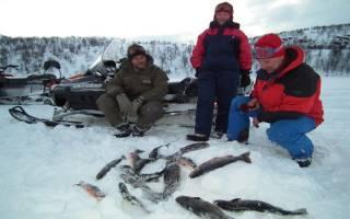 Рыбалка в финляндии осенью