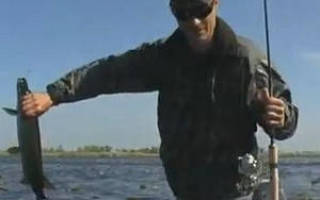 Рыбалка в низовьях днепра в контакте
