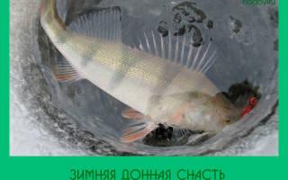 Зимняя рыбалка на донку