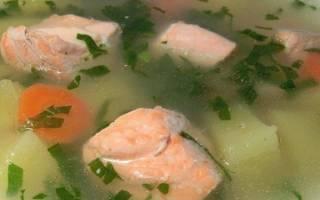 Рыбный бульон рецепт