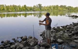 Как ловить рыбу на речке